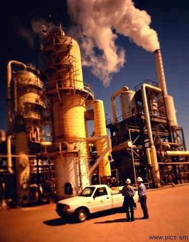 IPP Enero 2011