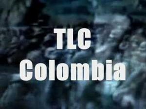 tlc-300x225